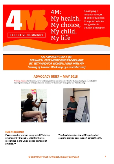 4M Advocacy Brief about the work of the 4MNet UK National Network